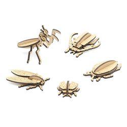 미니 곤충 만들기 5종 set