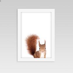동물액자 아이방 인테리어 다람쥐