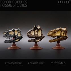 REBOR 리보 공룡 두개골 화석 시리즈