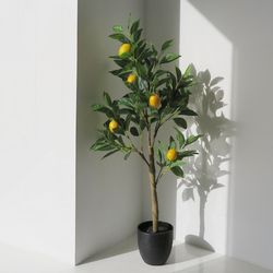 레몬나무 유주 인테리어 조화나무 국민L사이즈
