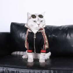 강아지옷 고양이아우터 개찌 스타일 져지 집업