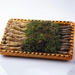 충남 금산 수삼더덕 선물세트 大 2kg(수삼700g+더덕1300g)