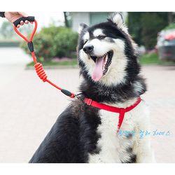 강아지 캔디 컬러 하네스 리드줄세트 M L사이즈 2종