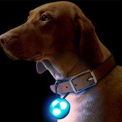펫 야간 산책 LED 펜던트 라이트 안전등 자전거라이트 랜덤발송