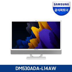 [2021년 신모델] 삼성전자 올인원PC DM530ADA-L14AW