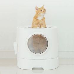 펫트리움 고양이 탑도어 화장실 서랍형 1입 고양이화장실