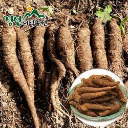 정선더덕농원 6년근 생더덕 1kg (중-35뿌리내외)