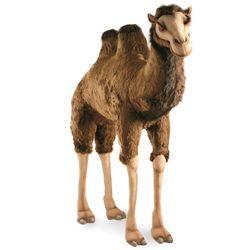 2064번 낙타 Bactrian Camel170 cm.H