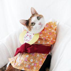 오렌지 유카타 기모노 고양이 강아지 옷 설빔 할로윈 MIYOPET