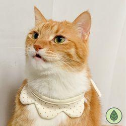 오가닉 티아라 턱받이 강아지턱받이 고양이턱받이 케이프