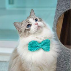 왕리본 턱받이 강아지목걸이 고양이케이프