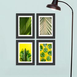 cq350-초록식물들액자세트