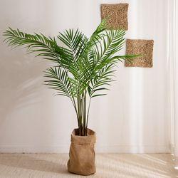 열대 나무 조화 (이레카야자-160cm)