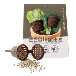 꼬마비료(6g2개입)-튼튼엽채 영양비료