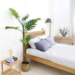 인조나무 조화 화분 내츄럴라인 몬스테라 180cm