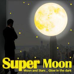 KR-0100 슈퍼문 달과 별야광 스티커 별자리