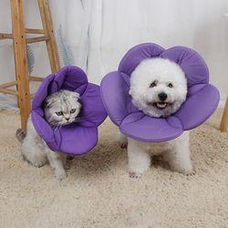 반려견 강아지 편한 가벼운 꽃모양 푹신 수술 넥카라