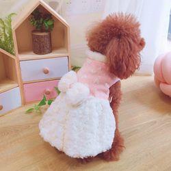 반려견 강아지 양털 기모 겨울 옷 리본 스커트 원피스