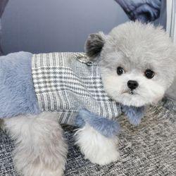 강아지 반려견 하네스 자켓 트위드 베스트 겨울 옷