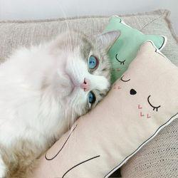 마시멜로 캣닢패드 고양이 쿠션 베개 장난감