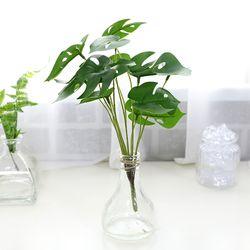 지피식물 그린테리어 고급조화 몬스테라 미니부쉬