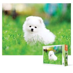 150피스 직소퍼즐 - 잔디밭에 앉은 강아지