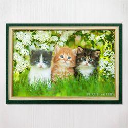 1000피스 직소퍼즐 흰 꽃밭의 아기고양이들 수지그린액자세트