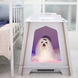 펫드라이룸 특허받은 강력살균 케어룸 강아지 고양이