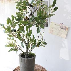 올리브 열매 조화 화분