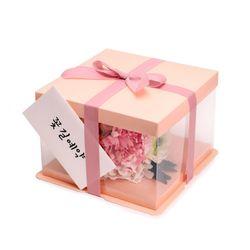 피치클리어 상자 소 (1set)