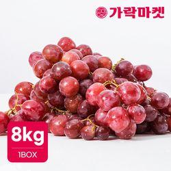 [가락마켓]달콤한 거봉 레드글로브 8kg 적포도