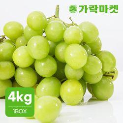 [가락마켓]씨없는 달콤 청포도 4kg 선물용