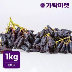 [가락마켓]씨없는 고당도 블랙 사파이어 포도 1kg