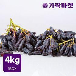 [가락마켓]씨없는 고당도 블랙 사파이어 포도 4kg