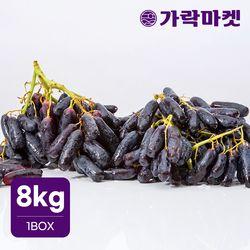 [가락마켓]씨없는 고당도 블랙 사파이어 포도 8kg