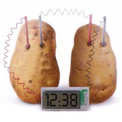 과학실험 감자시계 포테이토클락 실험도구 만들기