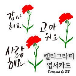 캘리그라피카드 카네이션꽃 감사 미니 엽서 편지 카드