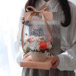 그라치아 비누꽃 카네이션 화분 캐리어