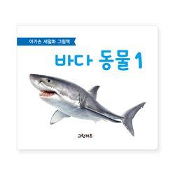 아기손 세밀화 그림책 - 바다동물1