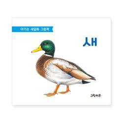 아기손 세밀화 그림책 - 새