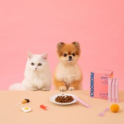 강아지 고양이 유산균 퍼피 앤 키튼 1박스(1개월분)
