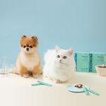 고양이 유산균 시니어 1박스(1개월분)