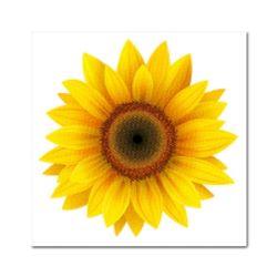DIY 보석십자수 - 노란태양꽃 BE02 (25x25)