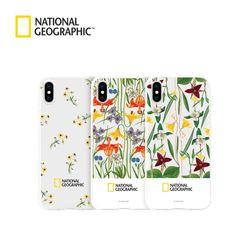 내셔널지오그래픽 아이폰6 플라워 젤리 패턴&프레임 타입 케이스