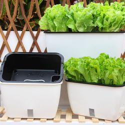 자동 급수 화분 식물 재배기 소형 플라스틱 텃밭 상자