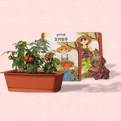 베란다텃밭화분 씨앗3종 흙 SET