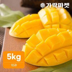 [가락마켓]고당도 프리미엄 골드망고 5kg(10과)