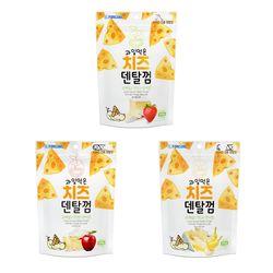 포켄스 치즈덴탈껌100g 사과 딸기 바나나