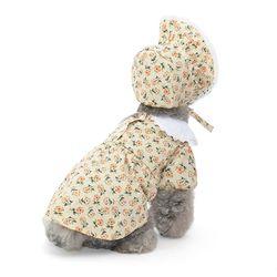 잔꽃 레이스 카라 강아지 원피스(모자)