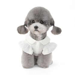 카라 자수 강아지 셔츠